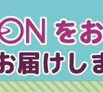 イオン ネットスーパー 沖縄